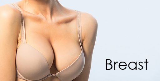 BREAST-text-Services-Dr-Dembny