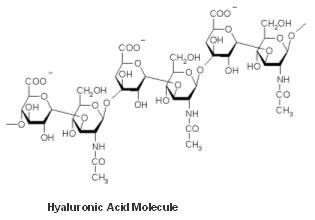 hyaluronic-acid-molecule-juvederm-dr-dembny